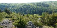 Gorges et plateau de la monne (2)